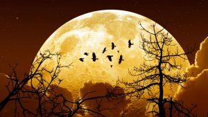 super-lune-rare-2